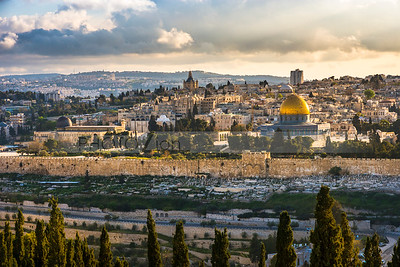 Temple Mount and the Old City Jerusalem with cypress trees in foreground