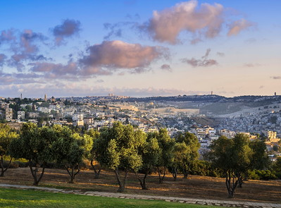 Jerusalem with olive trees