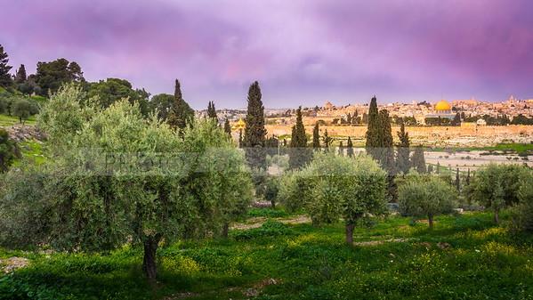 Mount of Olives vith view of Jerusalem