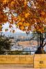 Fall at Talpiot promenade