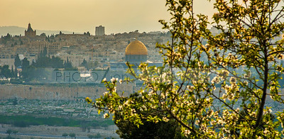 Jerusalem with almond tree