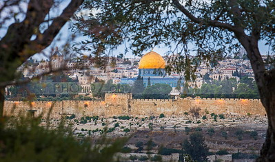 Jerusalem Golden Gate and the Temple Mount seen through trees on Mount of Olives
