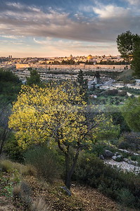 Fall sunrise in Jerusalem