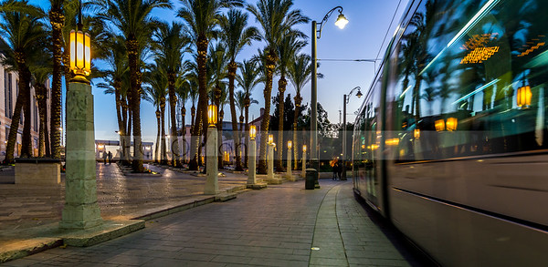 Light Rail  and palm trees reflection