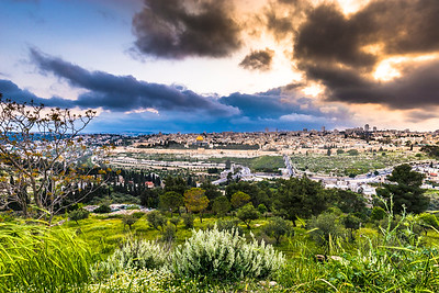 Temple Mount and the Old City Jerusalem, view from grassy hillside of Mount of Olives