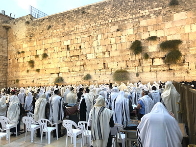 Morning prayer at the Western Wall