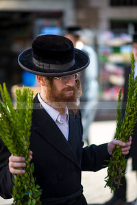 Jewish Orthodox man holding bunches of Hadas (myrtle) leafy branches of the Four Species - Sukkot preparations in Mea Shearim