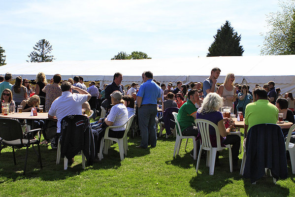 Beer Festival 2013