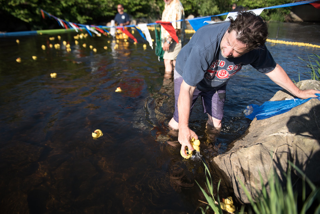 . Raymond Burnett picks up the ducks as they cross the finish line during Sunday\'s duck race at Riverfront Park in Fitchburg on July 9, 2017.  SENTINEL & ENTERPRISE JEFF PORTER