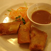 Vegetable spring rolls and peanut sauce
