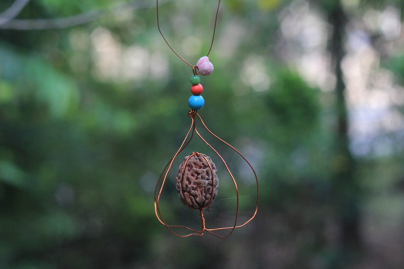 With tiny spider, which settled soon after the hanging a Rudraksha on a tree
