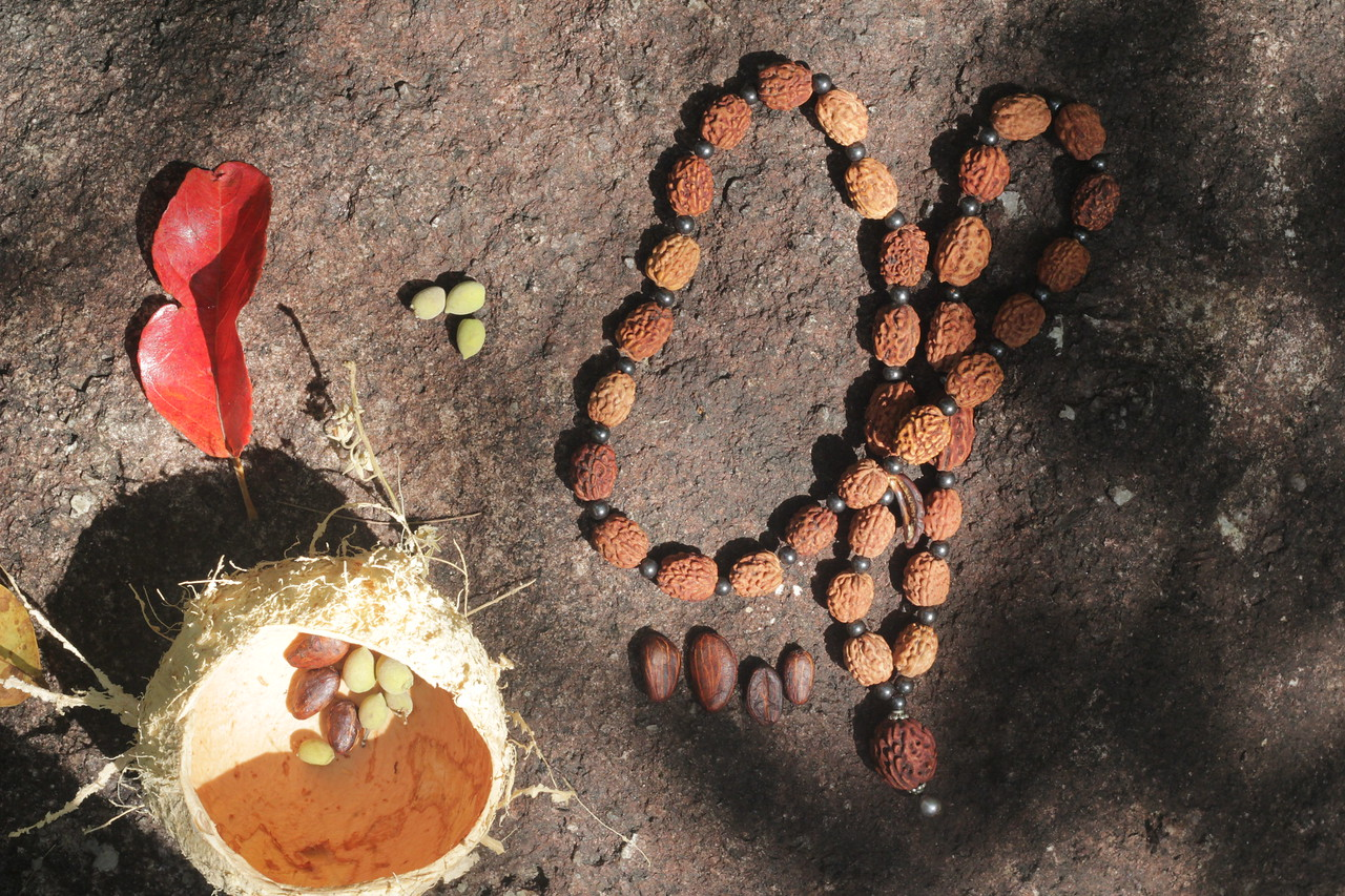 Mala with 36 Rudraksha beads