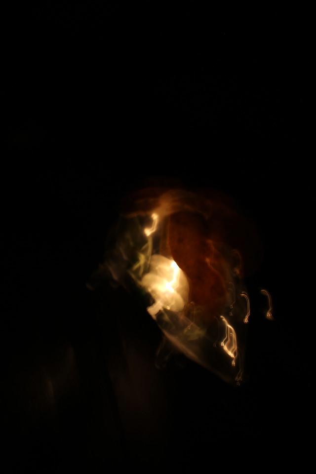 Varaha carefully rising-up the Earth with Titikaka