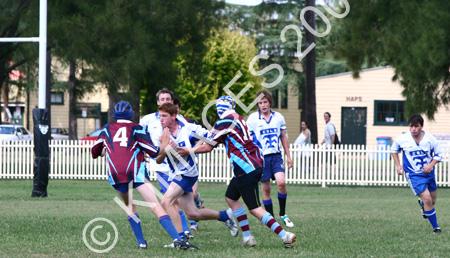Hawkesbury Cup R L 06 - 8-3-06 (13)a