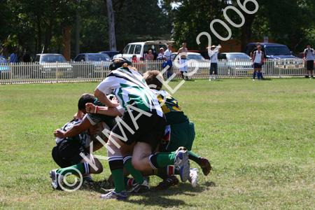 Hawkesbury Cup R L 06 - 8-3-06 (308)