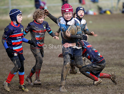 Darlington Mowden Park Mini Rugby Festival