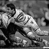 Rugby Union Season 2009-10 : 38 galleries with 7623 photos