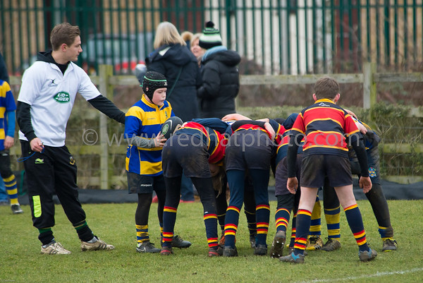 LandRover Premiership Cup, Under 11's, Franklin's Gardens, 7 February 2015