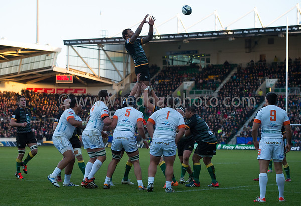 Northampton Saints vs Benetton Treviso, European Rugby Champions Cup, Franklin's Gardens, 13 December 2014
