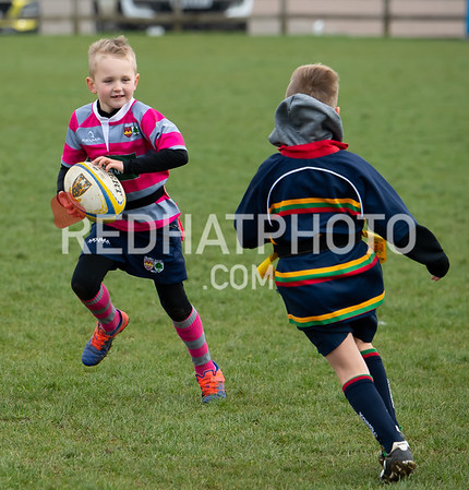 Under7s tournament, Franklin's Gardens, 9 March 2019