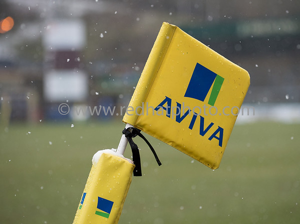 London Wasps vs Northampton Saints, Aviva Premiership, Adams Park, 23 March 2013