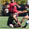 Men's Division II Rugby: SFGG v EPA