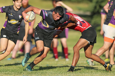 Stags Rugby G1362122