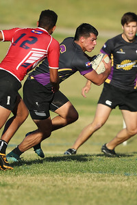 Stags Rugby G1362119