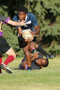 Stags Rugby G1362153