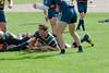 2016 Michigan Rugby vs  Illinois 109