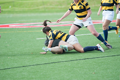 2016 Michigan Wpmens Rugby 10-29-16  041