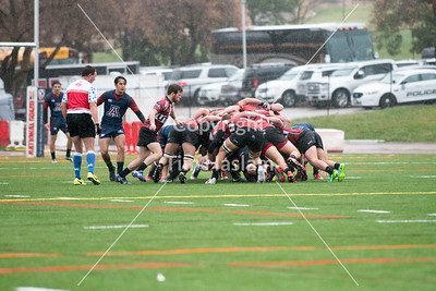2017-Rugby-Utah-Arizona-15