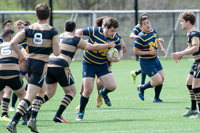 2017 Michigan Rugby - Collegiate Cup  502