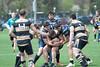 2017 Michigan Rugby - Collegiate Cup  678