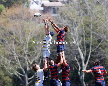 California vs St. Mary's(Rugby)