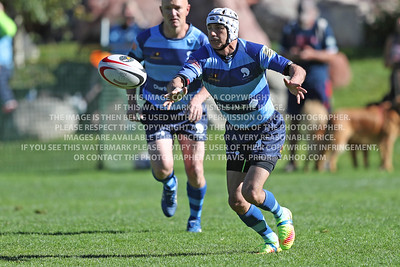 Mosman Rugby Men 50's I1570841
