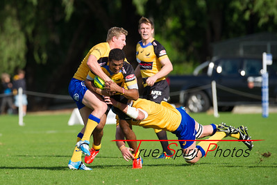 Buildcorp_National_Rugby_Championship_Perth_Spirit_vs_Brisbane_City_31 08 2014 -27