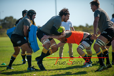 Buildcorp_National_Rugby_Championship_Perth_Spirit_vs_Queensland_Country_04 10 2014-2