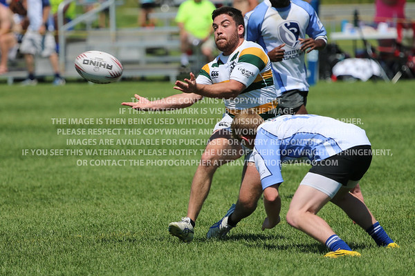 CSU Rams Rugby 2015 Denver Seven's Rugby Tournament