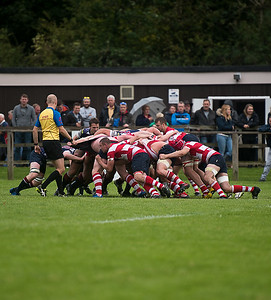 Dorking v Shelford