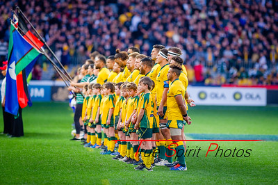 Perth_Test_Qantas_Wallabies_vs_All_Blacks_10 08 2019-17