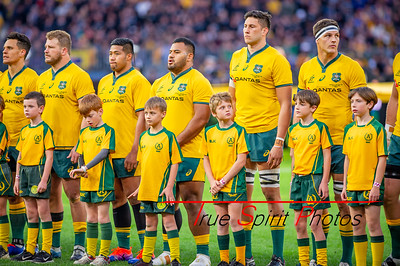 Perth_Test_Qantas_Wallabies_vs_All_Blacks_10 08 2019-16