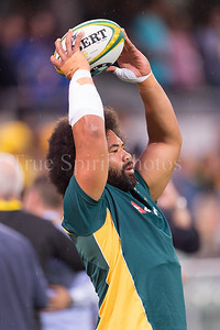 Perth_Test_Qantas_Wallabies_vs_South_Africa_09 09 2017-15