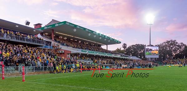 Rugby_Championship_Qantas_Wallabies_vs_Argentina_17 09 2016-15