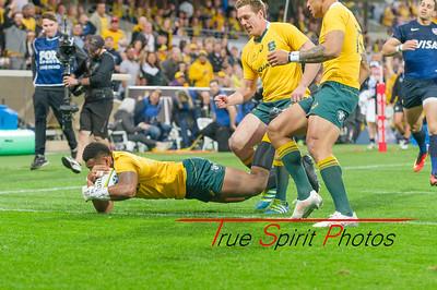 Rugby_Championship_Qantas_Wallabies_vs_Argentina_17 09 2016-21