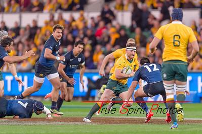 Rugby_Championship_Qantas_Wallabies_vs_Argentina_17 09 2016-16