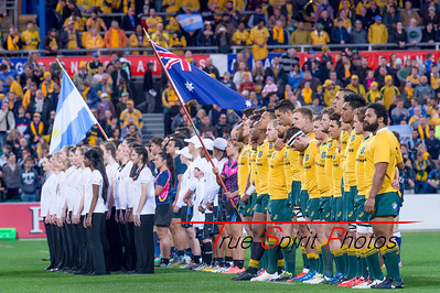 Rugby_Championship_Qantas_Wallabies_vs_Argentina_17 09 2016-12