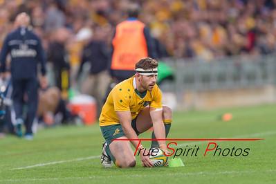 Rugby_Championship_Qantas_Wallabies_vs_Argentina_17 09 2016-23