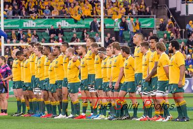 Rugby_Championship_Qantas_Wallabies_vs_Argentina_17 09 2016-11