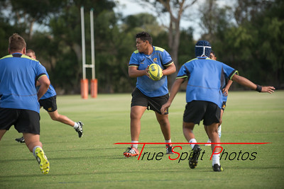 RugbyWA_Junior_Gold_Cup_U15's_Training_Session_18 02 2016-13